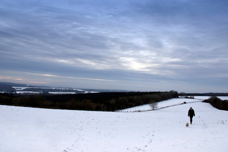 Boxing Day Snow on The South Downs