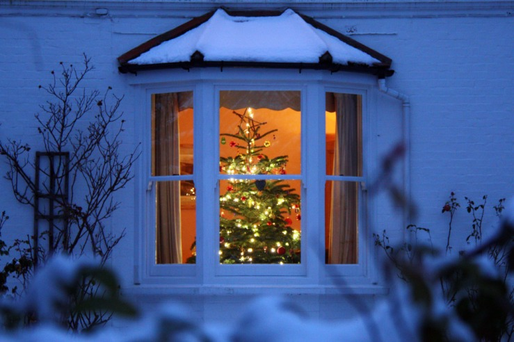 Christmas Tree in the window with snow