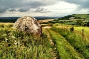andy_goldsworthy_chalk_balls_trail_south_downs_1-scaled1000