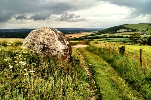 Andy_goldsworthy_chalk_balls_trail_south_downs_1