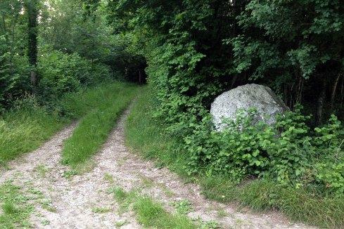 Andy Goldsworthy chalk stones trail stone 1