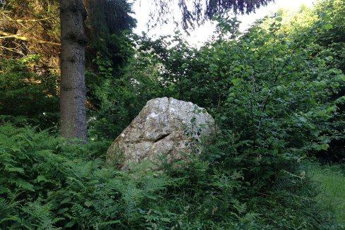 West Dean to Bepton/Cocking chalk stones walk stone 9