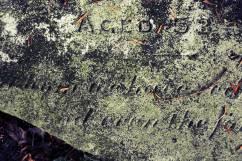 A broken gravestone at Treyford Cemetery