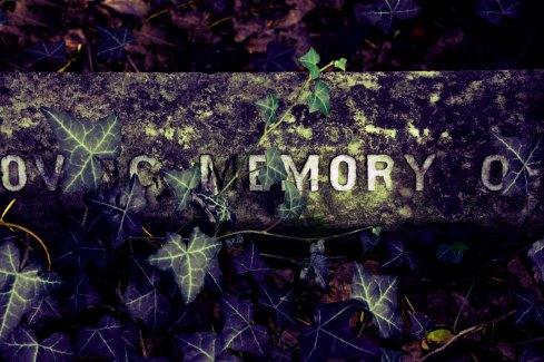 In Memory – Treyford Cemetery