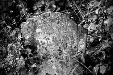 A forgotten gravestone