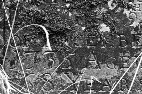 Treyford Church Gravestone dated 1735