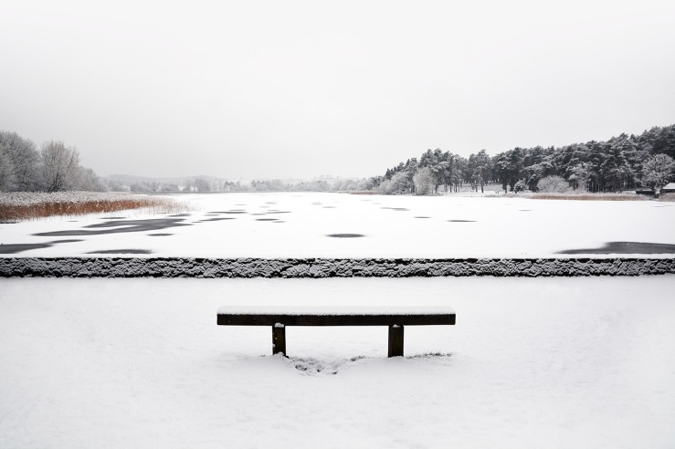 Snow on the water Frensham Little Pond Fb