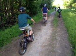 Bike-ride-Cubs-in-the-Woods