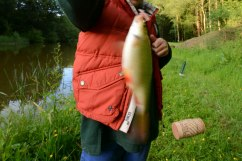 Chiddingfold Cubs Fishing Whithorn Farm 7