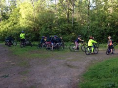 Cubs-Cycling-in-the-woods