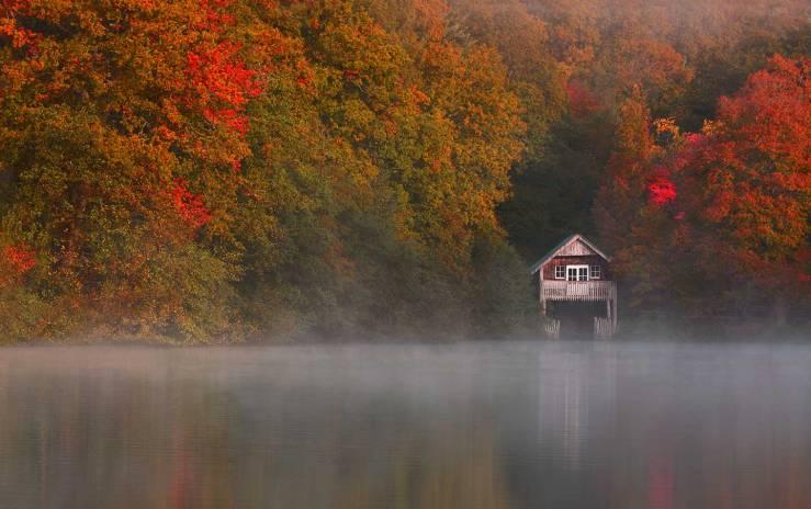 Winkworth Arboretum autumn